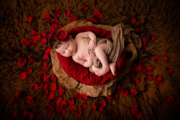 Newborn photography Vancouver.