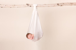 Sleeping newborn baby girl suspended in a sling from a branch.