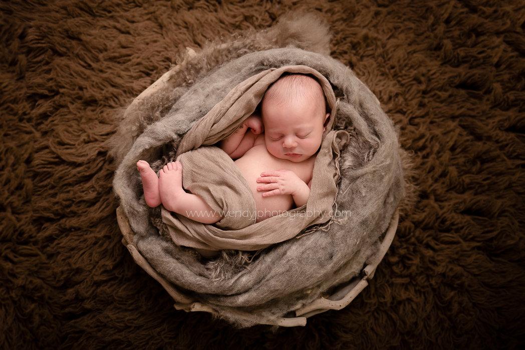 Fine art newborn baby photography by award winning Vancouver newborn photographer Wendy J.